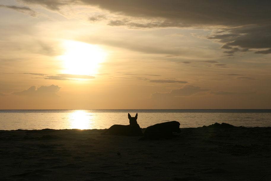 Lazy Beach, Koh Rong Saloem Cambodia