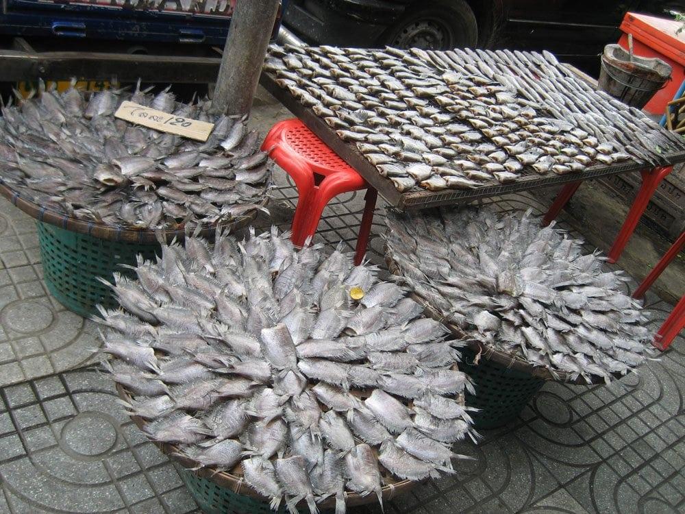 Dried Fish | Bangkok, Thailand