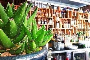 El Topo | Mexican Restaurant