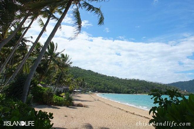 This Island Life   Hayman Island, The Whitsundays