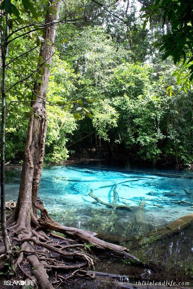 This Island Life | Blue Pool - Krabi, Thailand
