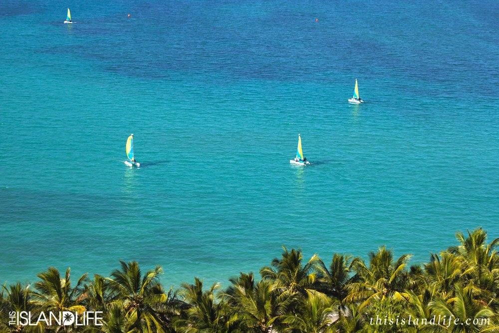 This Island Life | Hamilton Island