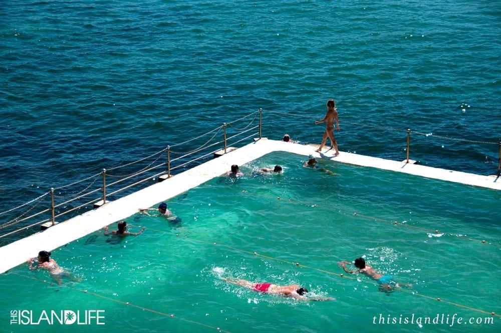 This Island Life | Bondi Icebergs