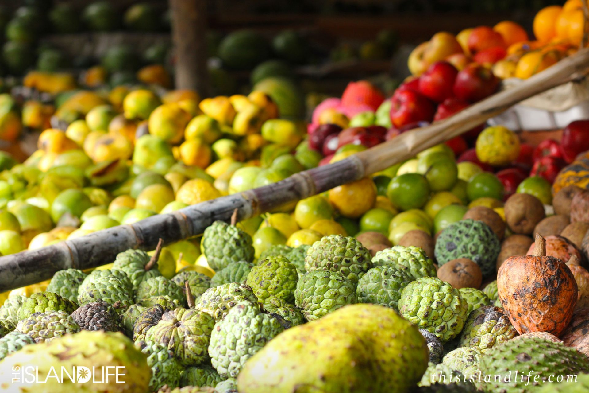 This Island Life | Tropical fruit in Sri Lanka