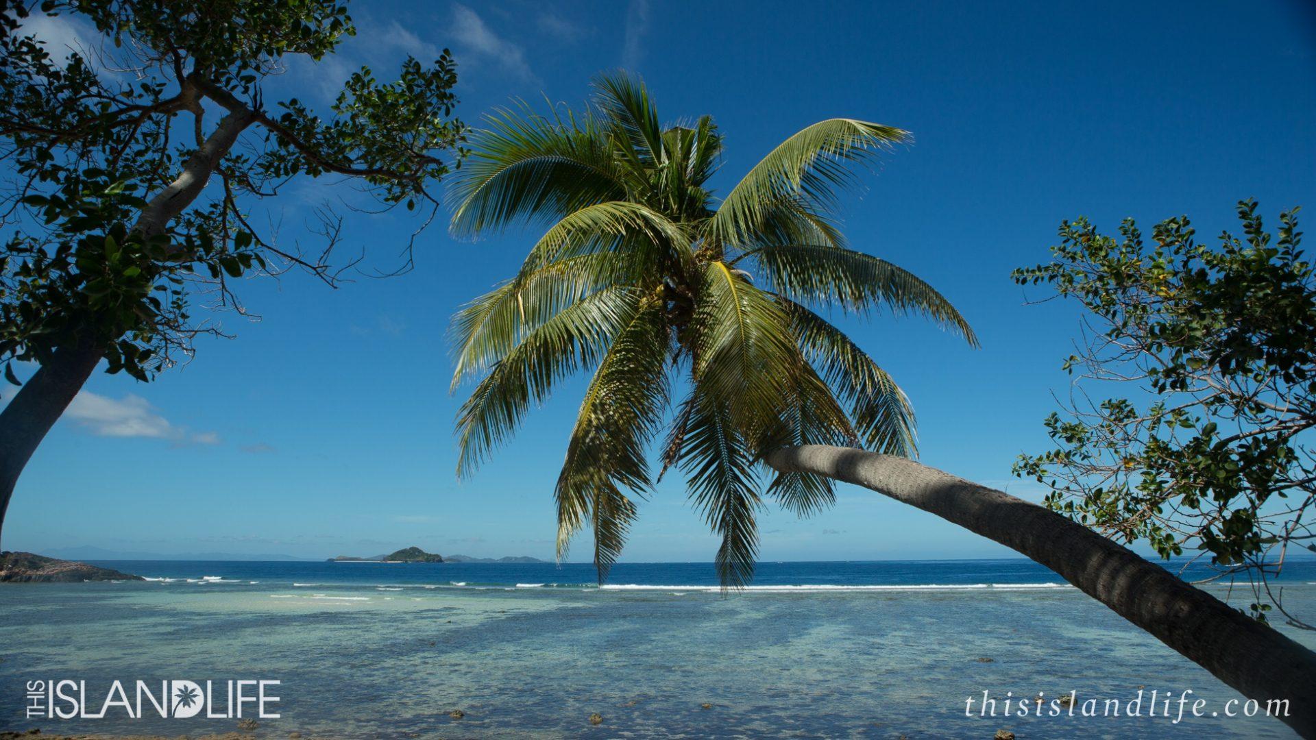Mamanuca Island Day Trip