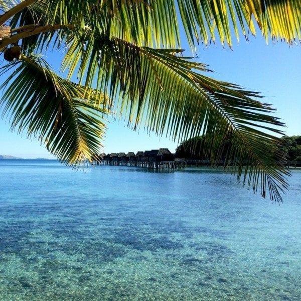 this_island_life_buzzfeed_thumbnail