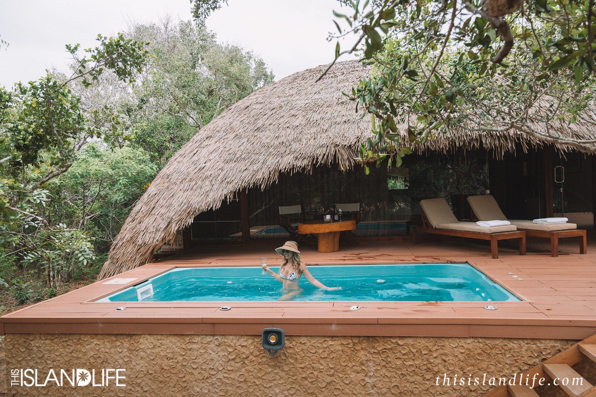on safari at chena huts sri lanka this island life