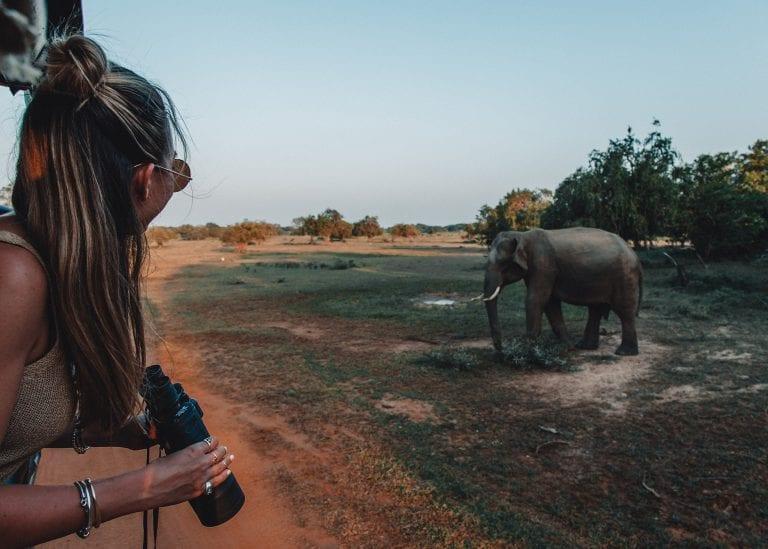154042e5a Explore Sri Lanka with Beyond Dream Travels